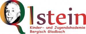 Q1stein Logo grossmitschrift Kopie